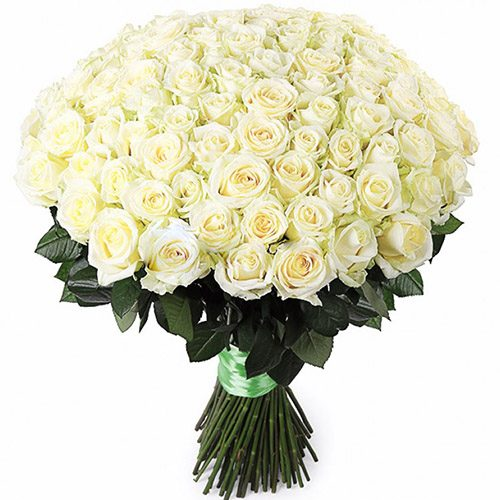 букет 101 біла троянда