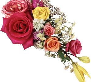 Композиції квітів