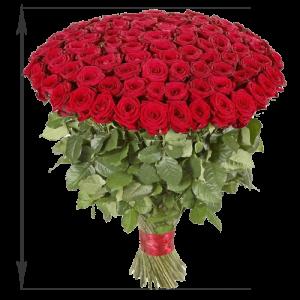 фото товару 101 червона троянда (50 см)