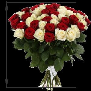 фото товару 51 троянда червона та біла (50 см)